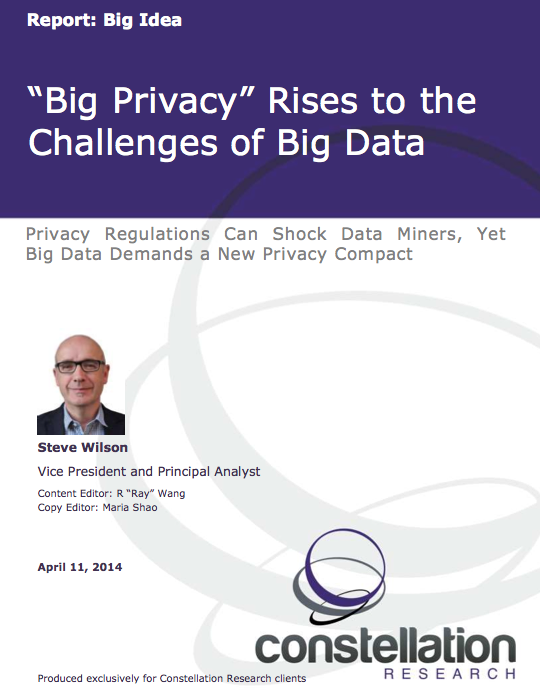 Big Privacy report cover