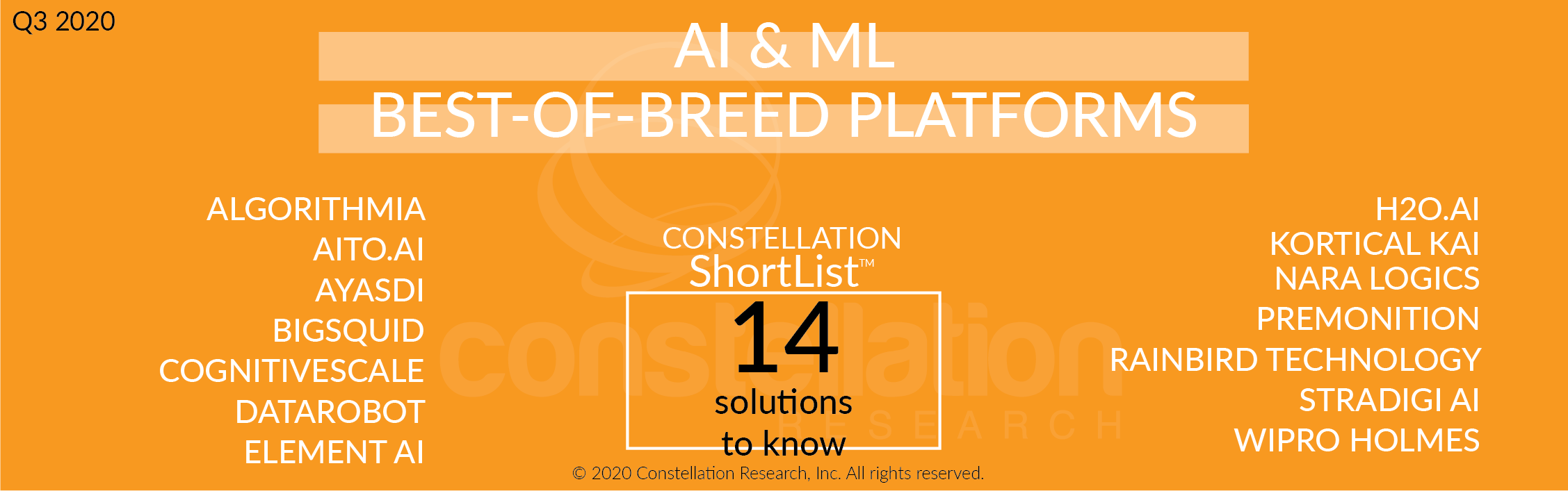 Constellation ShortList™ Artificial Intelligence and Machine Learning Best-of-Breed Platforms